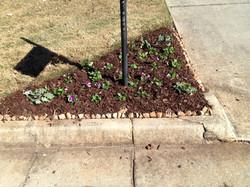 Curbside Flowerbed