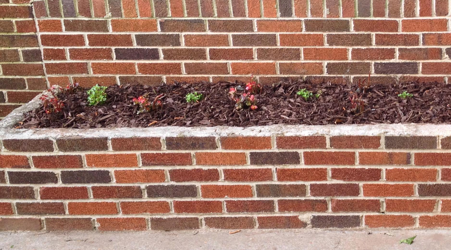 Planter Box Flowerbed
