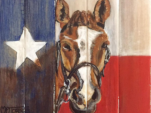 Horse with Texas Flag Background