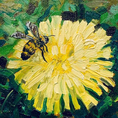 Honeybee & Dandelion 1