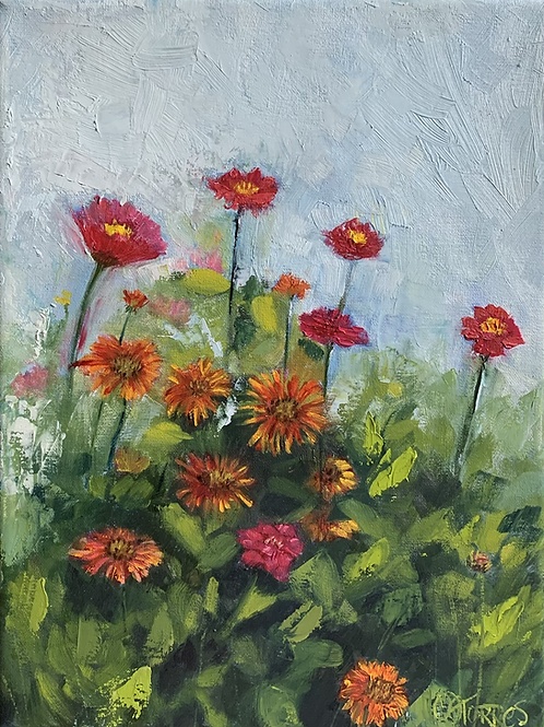 Zinnias and Indian Blankets