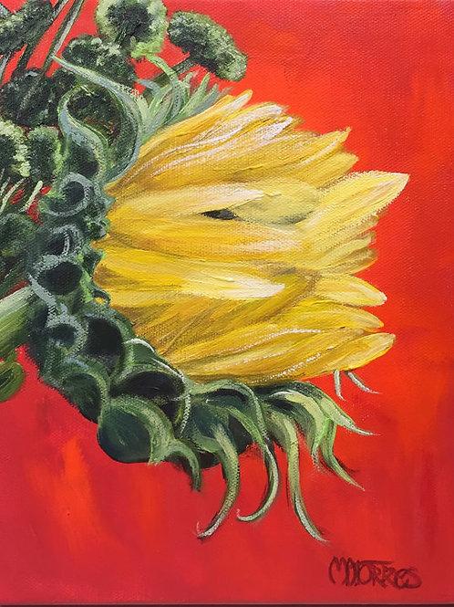 Bright Shiny  Day Sunflower