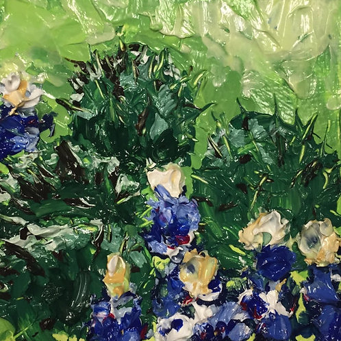 Cactus and Bluebonnets