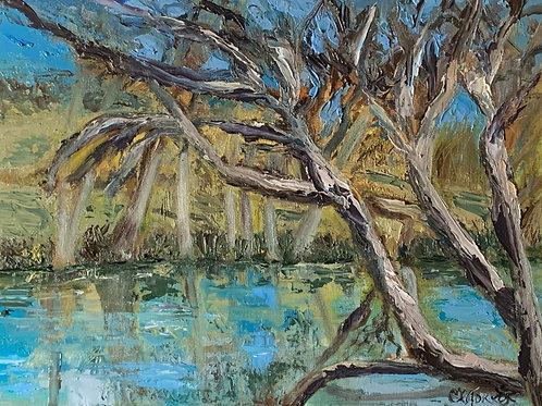 River Blues