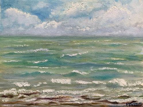 Corpus Bay Waters