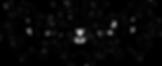 Noir sur fond transparent.png
