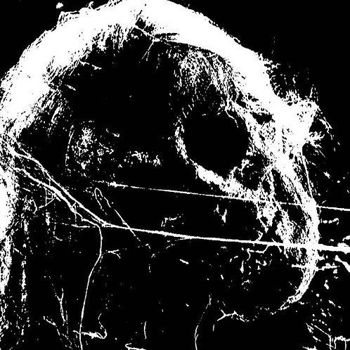 Putrefiance - Left to Decay