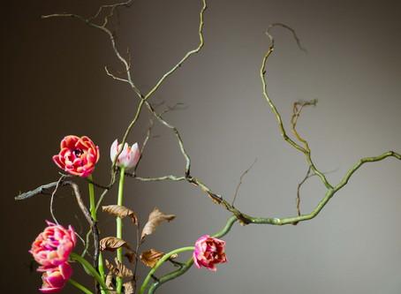 Ikebana for me.
