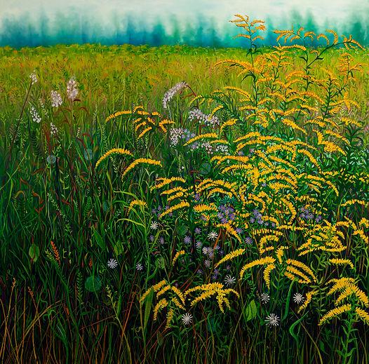 Goldenrod Field, Margaret Shipman 40 x 4