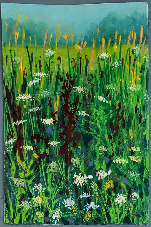 Yellowdock and Queen Anne's Lace b