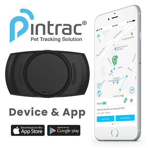 Device-App.jpg
