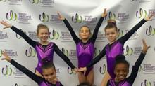 SundayShowday: Harlem Gymnastics Invitational 2017