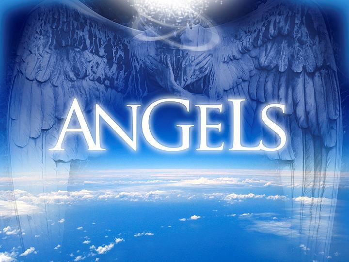 Angels Header.jpg