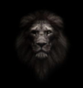 Lion%20head%20-%20Lion%20king%20face%20%