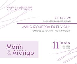 seminario_virtual_latinoamericano_de_vio