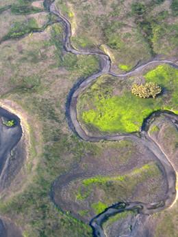 bassin d'arcachon (2).jpg