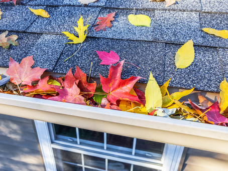 Free Gutters? Yeah, That's a Thing! But You Have to Enter NOW!