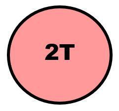 2T.JPG