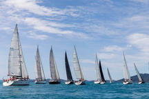 Yacht racing in Airlie