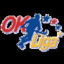 ok_liga.png