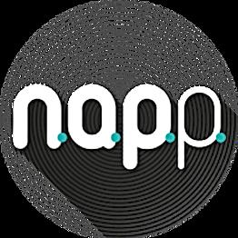 LOGO NAPP.png