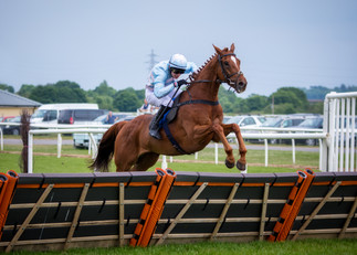 Newton Abbot Horse Racing.jpg