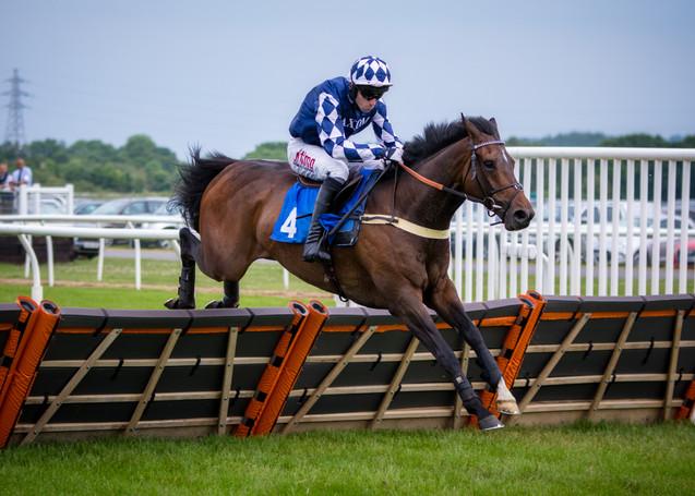 Newton Abbot Horse Racing.1.jpg