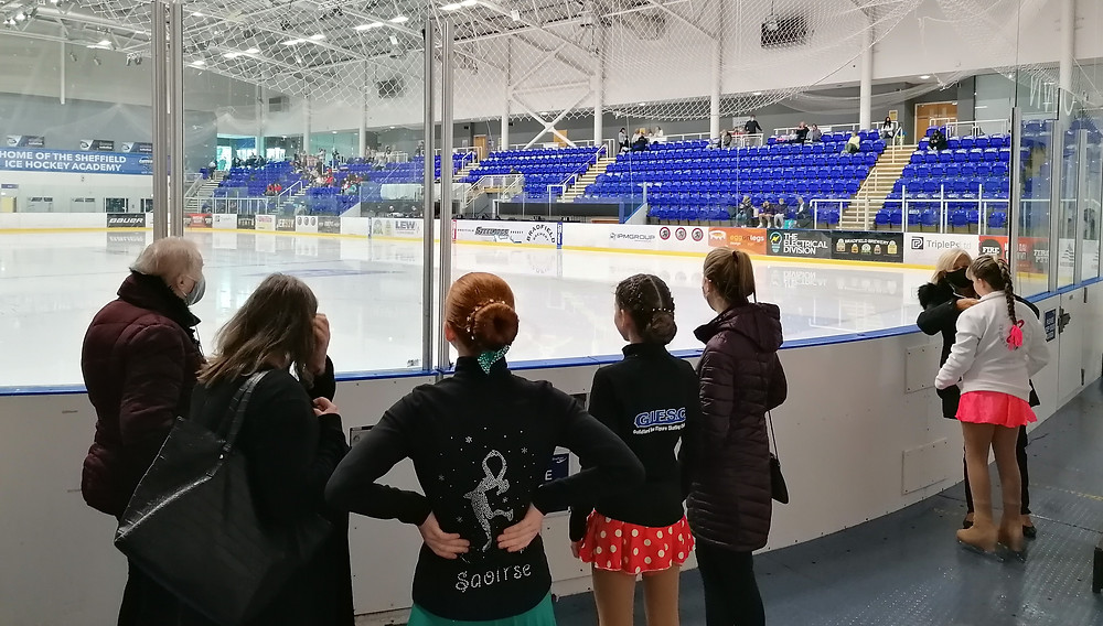 Skaters looking over an ice rink