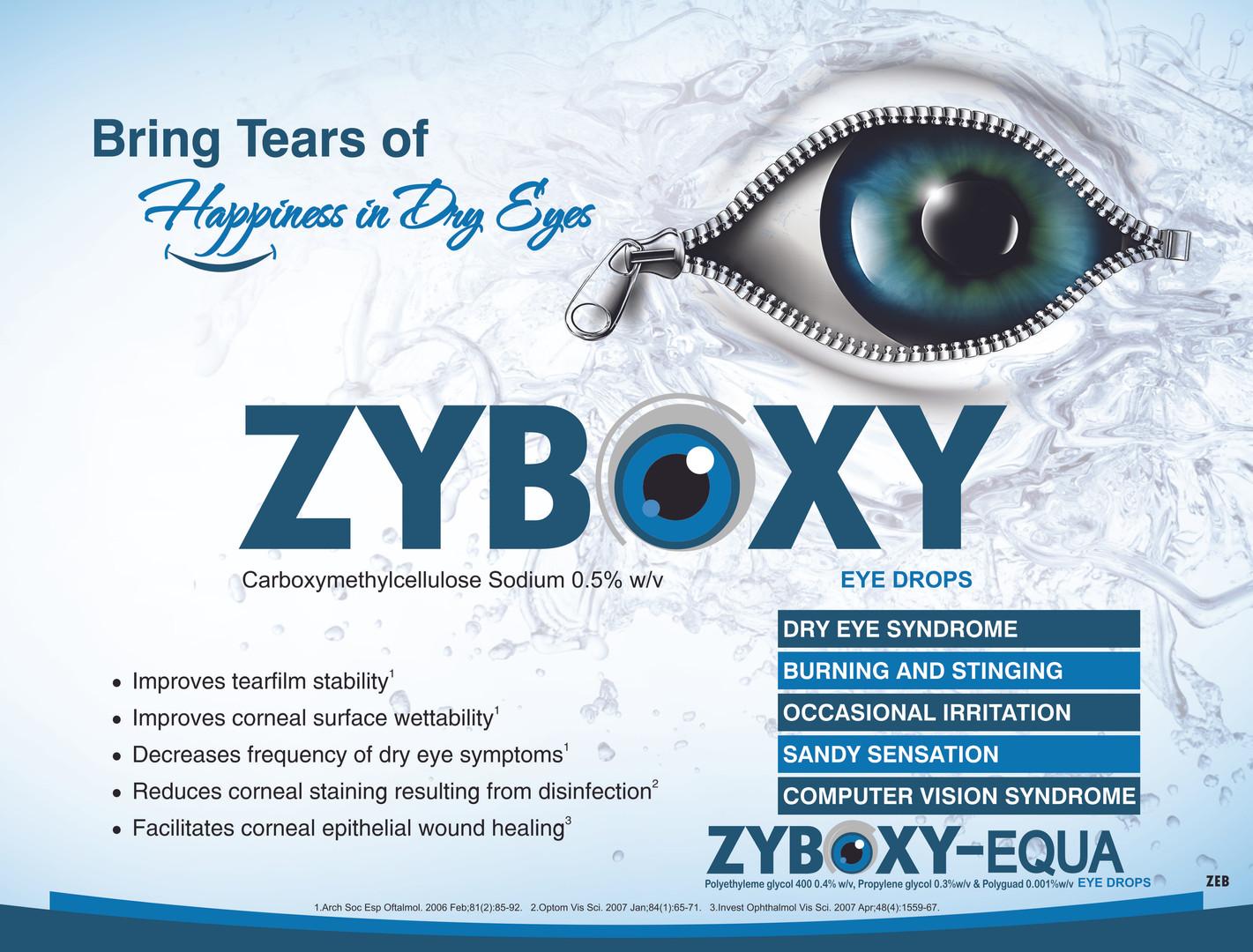 zyboxy.jpg