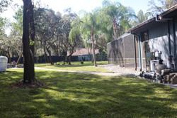 Sod-X St. Augustine Lawn Installation
