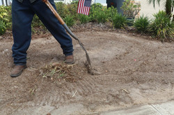 Sod-X team cleaning out the yard for installation