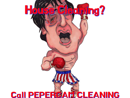 Who Wants To Knock-Out House Cleaning?