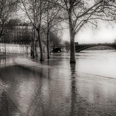 Crue de la Seine 2013 - Quai des Célestins