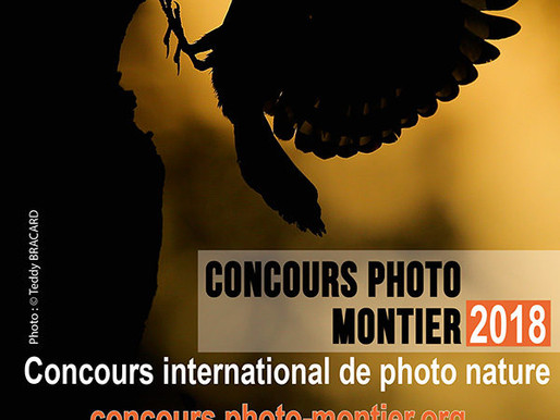 Le concours Photo de Montier en Der 2018 est ouvert.