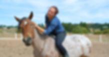 Perfect Balance Natural Horsemanship - F
