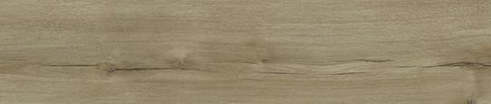 瑞吉山黃橡單片圖