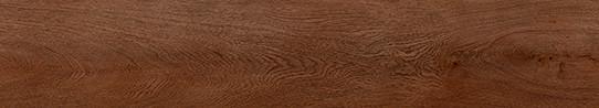 勃艮第棕橡單片圖