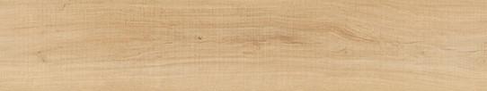 波爾多金橡單片圖