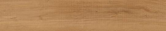 波爾多啡橡單片圖