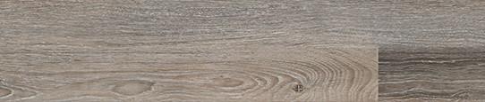 伏爾加銅橡單片圖