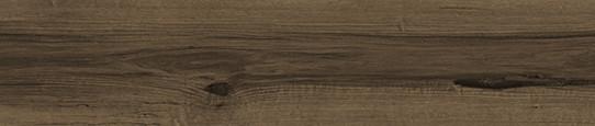 楓丹春木單片圖