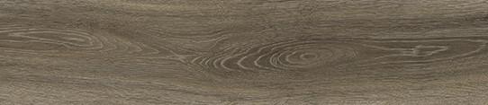 挪威米橡單片圖