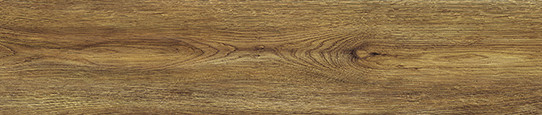 伏爾加棕橡單片圖