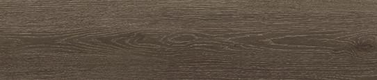 瑞吉山銀橡單片圖