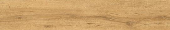 海德堡金橡單片圖