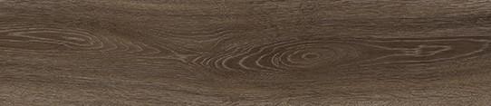 挪威棕橡單片圖