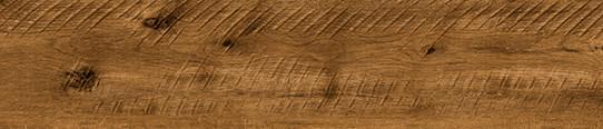 凡爾賽金單片圖