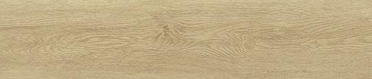 伏爾加金橡單片圖