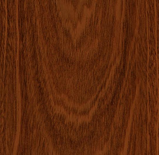 香脂木豆單片圖