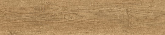 米黃山核桃單片圖